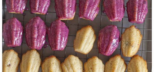 Glazed Blueberry Madeleines