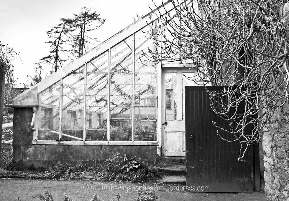 I love these old greenhouses