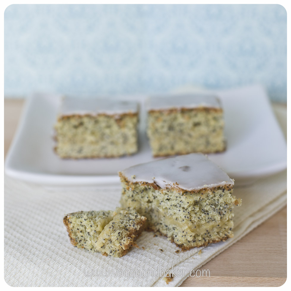 Lemon and Poppyseed Squares http://vagabondbaker.com/2013/04/24/lemon-and-poppy-seed-squares/