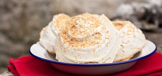 Coconut Crusted Meringues | Vagabond Baking
