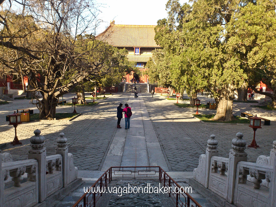The leafy, and ancient Confucius Temple