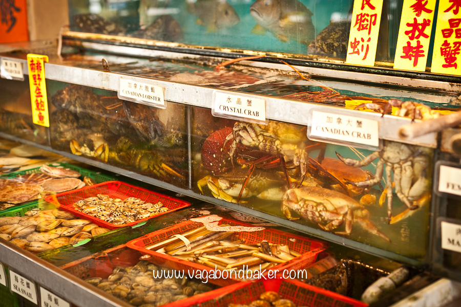 Live seafood, soon to end up on a plate!