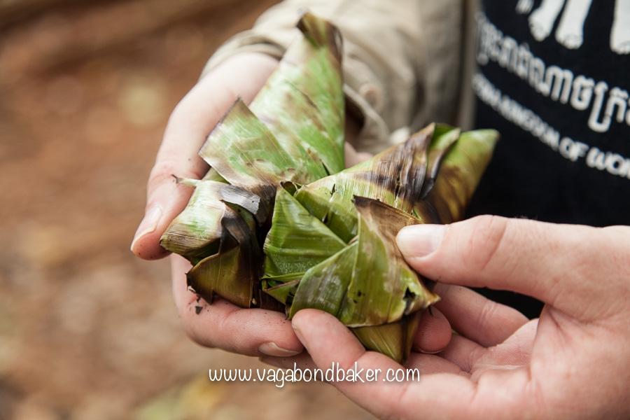 Khao Yai NP | Thailand-3194