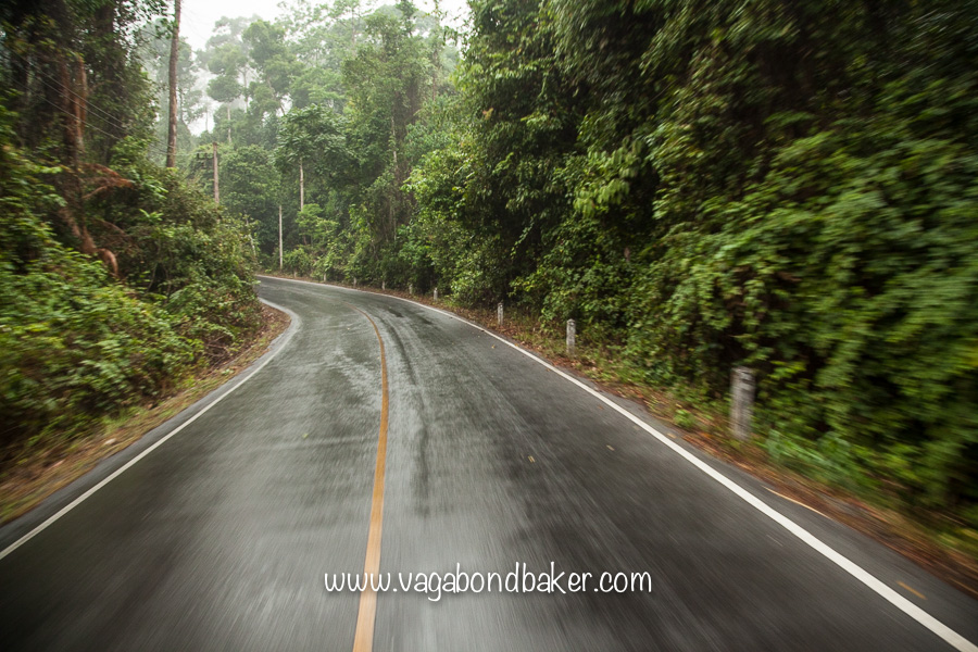 Khao Yai NP | Thailand-3284