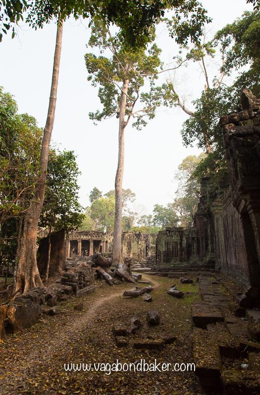 Preah Khan | Cambodia-2453