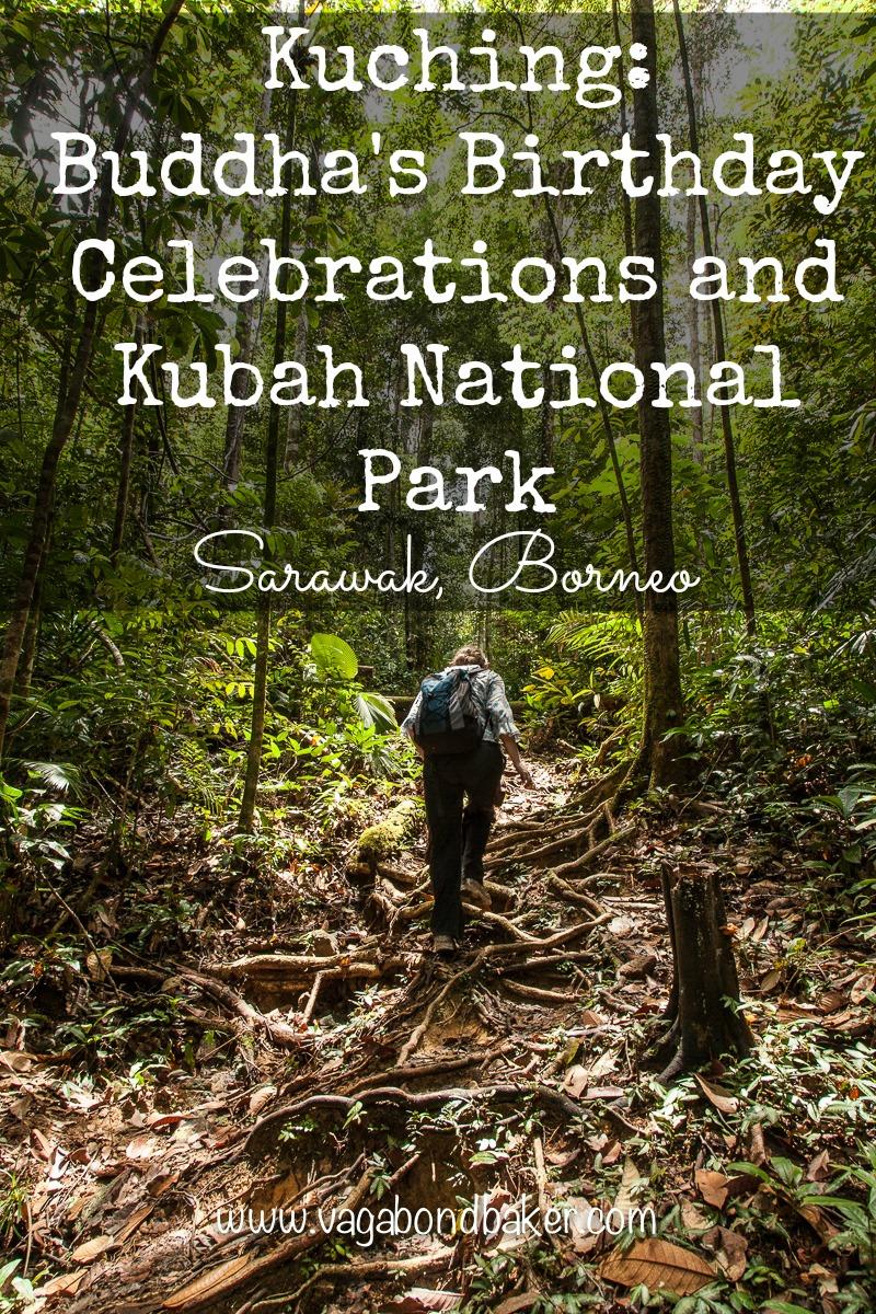 Kuching Buddha's Birthday and Kubah National Park // Sarawak // Borneo