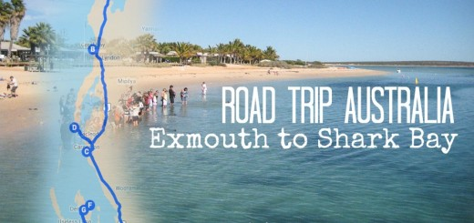 Exmouth to Shark Bay  Road Trip Australia