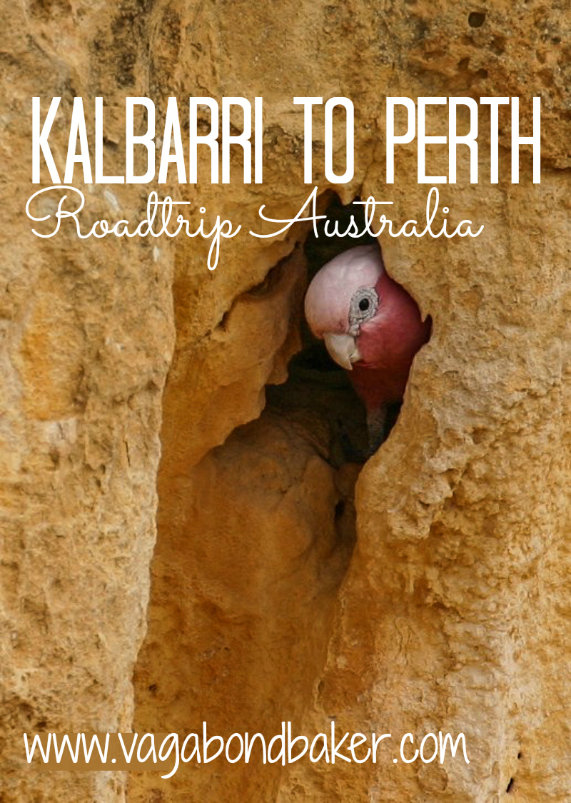 Kalbarri-to-Perth