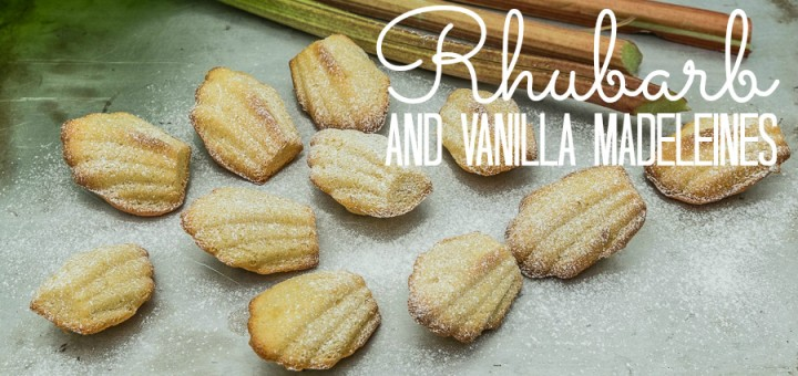 Rhubarb and Vanilla Madeleines-8278
