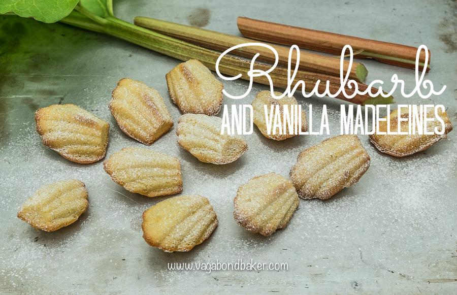 Rhubarb and Vanilla Madeleines - Vagabond Baker