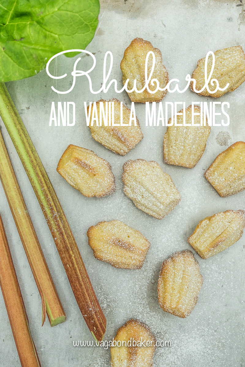 Rhubarb and Vanilla Madeleines-8285