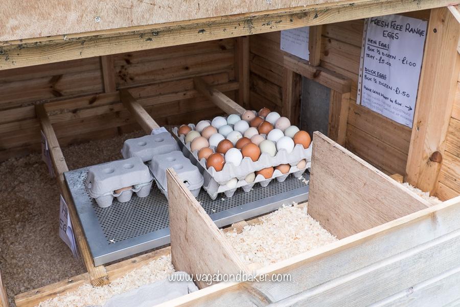 Eggs Fetlar