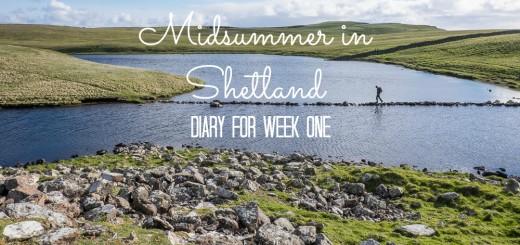 Shetland Week 1-8882