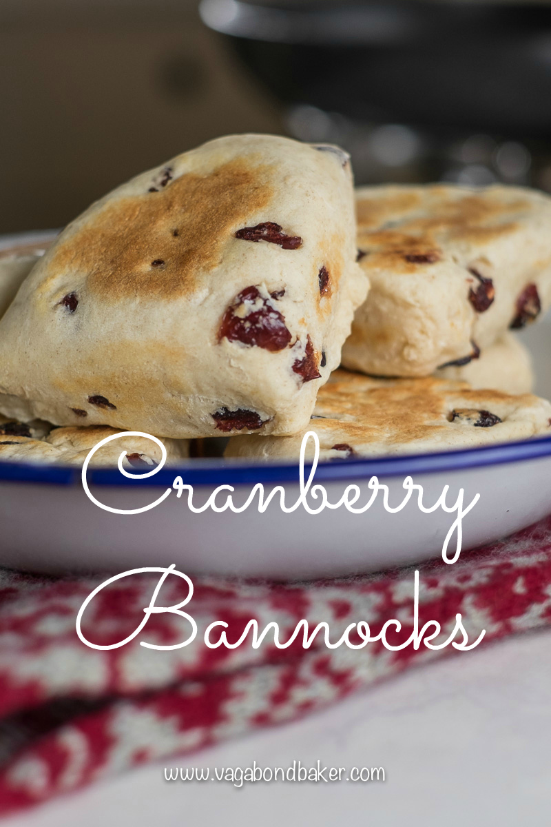 Cranberry Bannocks-3849