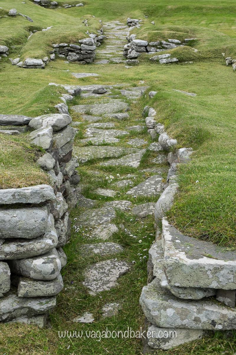 Midsummer in Shetland week3-1813