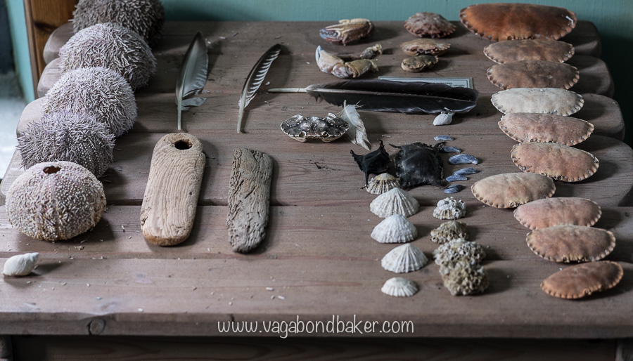 Findings, at Noss Visitor Centre