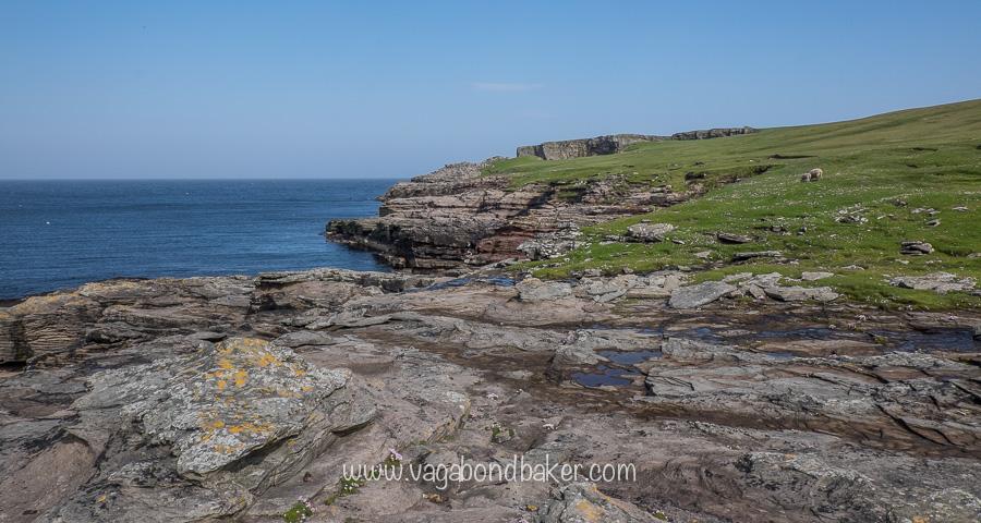 Midsummer in Shetland week 3