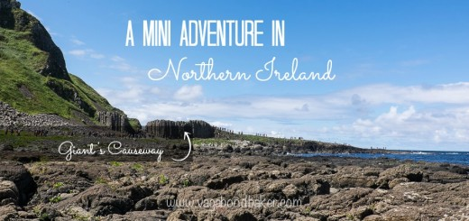 Northern Ireland-4925