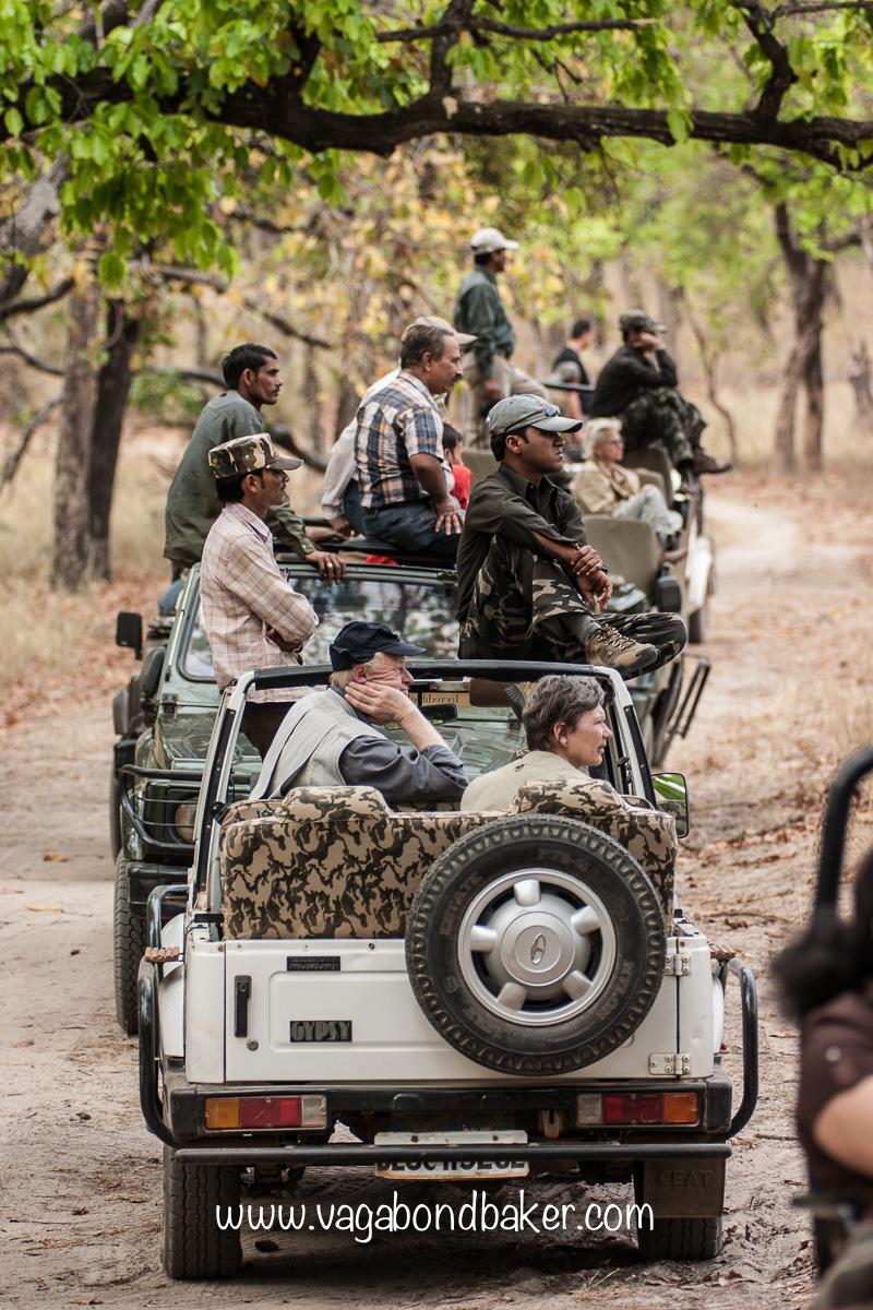 Bandhavghar NP jeeps-1537