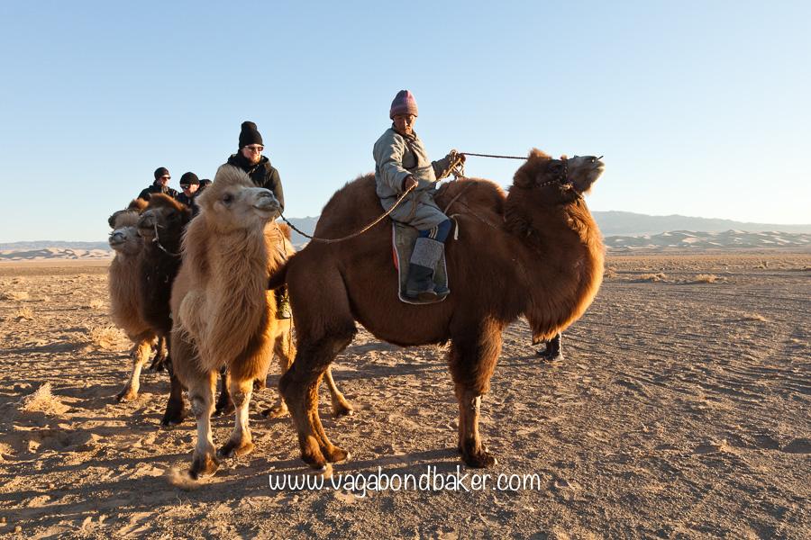 Gobi Desert-8428