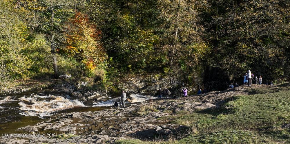 Stainforth Salmon-8201