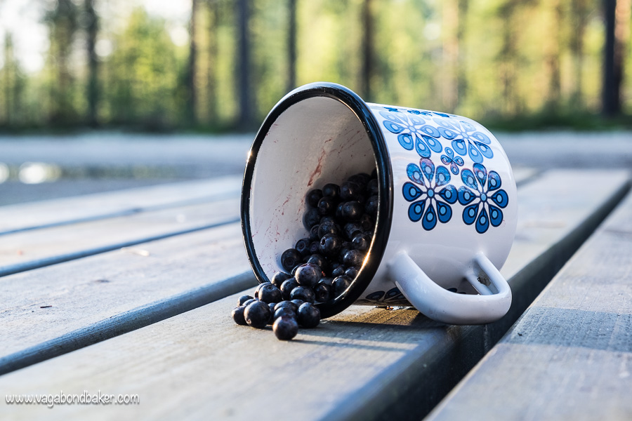 Finland Summer Blueberries