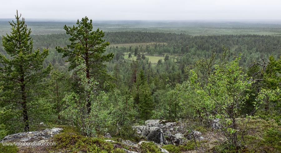 Saalivaara Reindeer Roundup Site